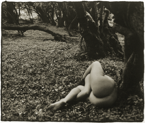 © Paul Caffell - from a series of Landscape Nudes - 31-Studio Platinum Print